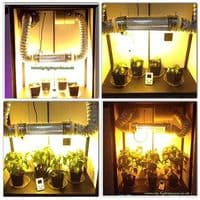 Large Stealth Grow Cabinet - HPS
